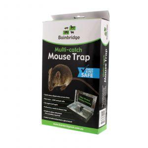 Multi Catch Mouse Trap Bainbridge Humane Capture Reliable Release System