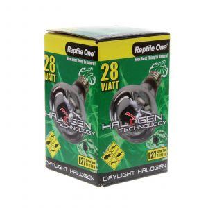 Halogen Heat Lamp Daylight 28W Eqv 40W E27 Kongs Reptile Light Vivarium Health