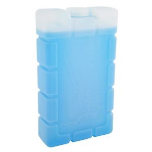 Ice Brick Large Coleman Camping Coolers Lunchbox Party Keep Food Cold Chill