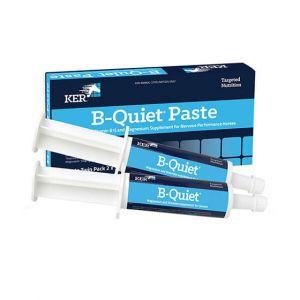 B Quiet Paste 30G 2Pk Ker