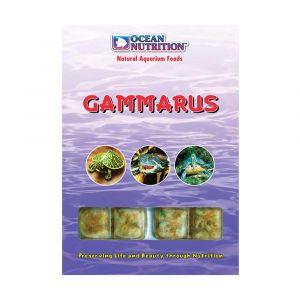 Frozen Gammarus 100G Ocean Nutrition