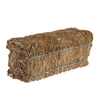 Straw Rectangle Bale