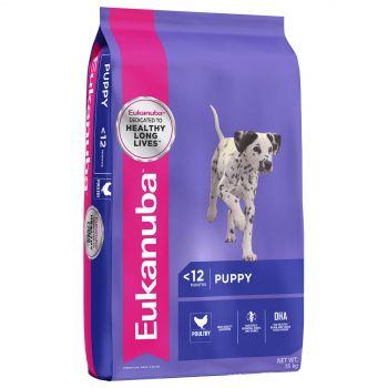 Eukanuba Puppy Food Medium Breed 15Kg Pet Premium Food Dog Healthy Development