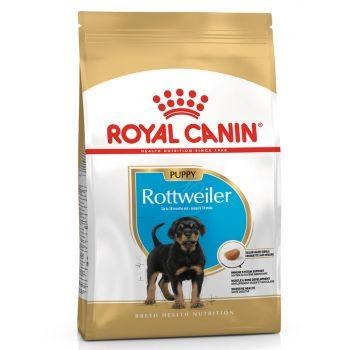 Royal Canin Rottweiler Junior 12kg Dog Food Breed Specific Premium Dry Food