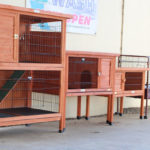 Chicken Coop & Small Animal Hutches