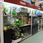 Reptile Supplies & Equipment