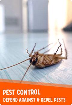 Pest Control & Repellents